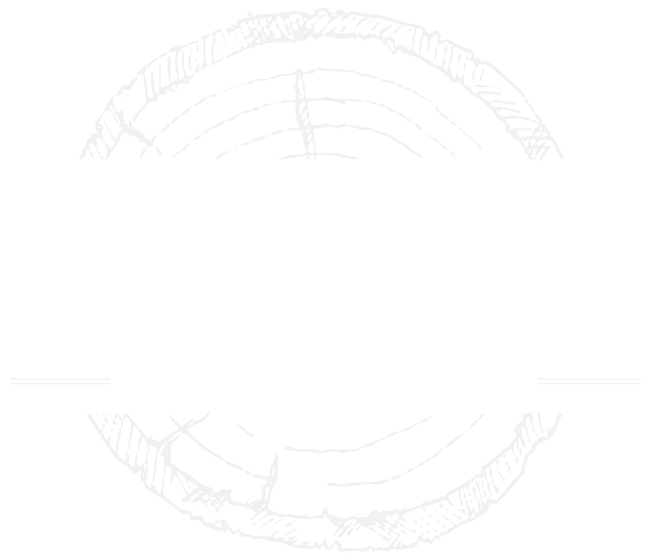 Devo's Stump Removal